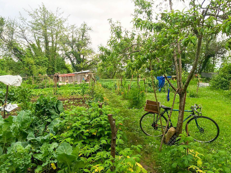 Les jardins vivriers - credit-Eric-Roux